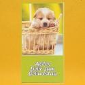 Geburtstags-Glückwunschkarte